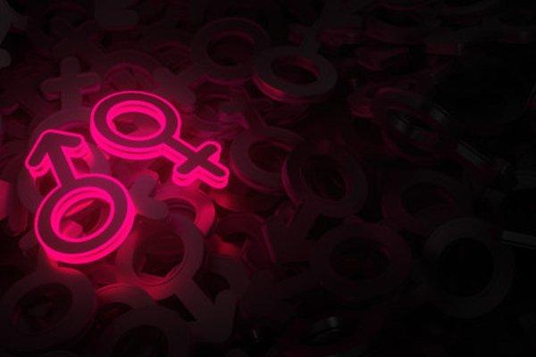 SWGR 526 | Gender Perception